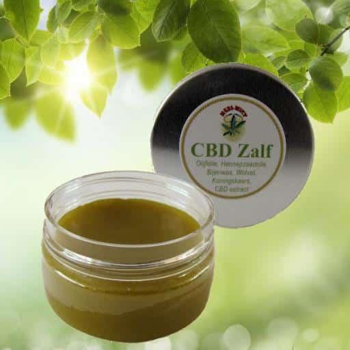 Cbd salbe der stiftung mediwiet ist ein natürlicher und heilender balsam. die leicht streichfähige salbe kann ...