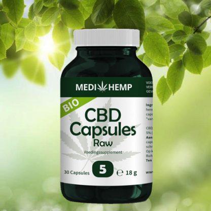 cbd capsules medihemp